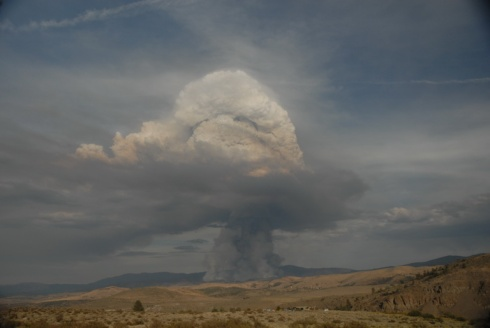 Wildfire Smoke Column